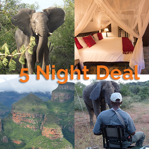 5 Nights Safari Package